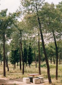 Parque Natural La Dehesa de Mari Martín