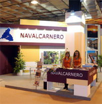 Stand Fitur 2005
